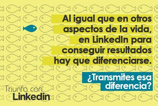 Personal branding y LinkedIn: Diferénciate en LinkedIn