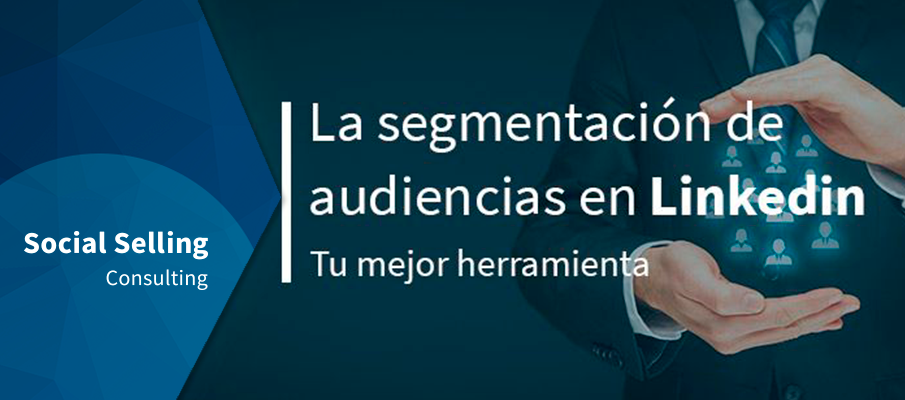 segmentación de audiencias linkedin