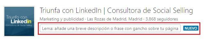 pagina de empresa en LinkedIn añadir un lema