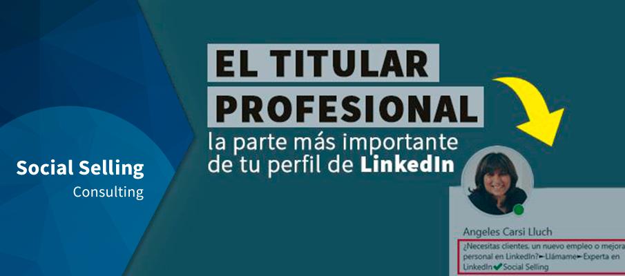 Titular Profesional