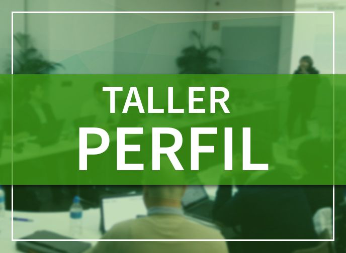 Productos woocomerce taller perfil