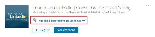 Página de empresa en LinkedIn - Perfiles LinkedIn enlazados