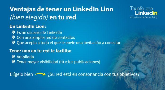Ventajas de tener un LinkedIn Lion (infografía)