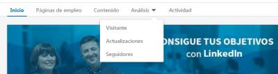 Linkedin Analytics - Análisis página LinkedIn, menú de opciones